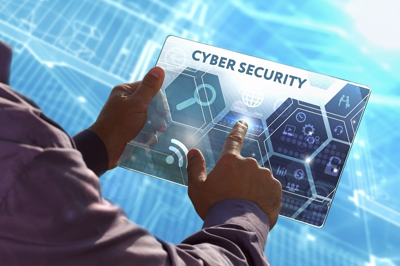 pandemic throws up new cyber risks