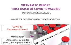 11 priority groups eligible to first covid 19 vaccination in vietnam