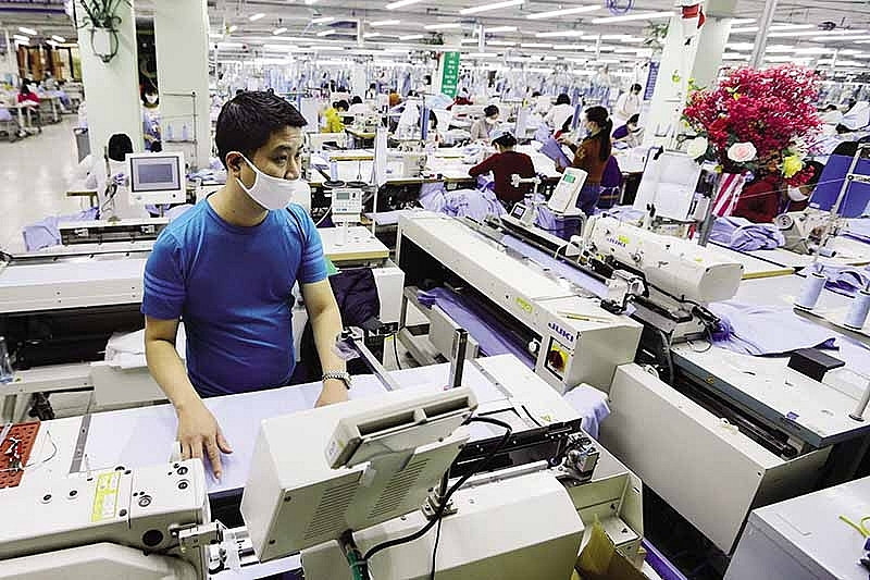 bright signs from textile and apparel export