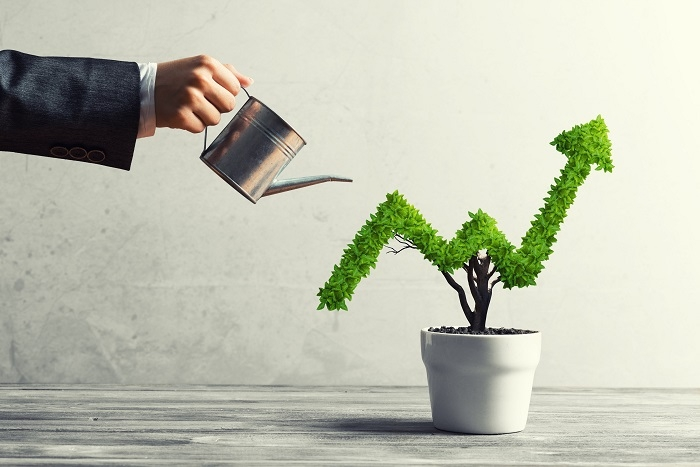 1533 p6 startups expand with fresh funding and portfolios