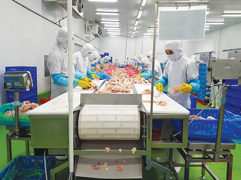 1546 p16 meat and dairy exporters up capacity to challenge rivals